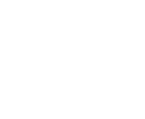 All-Star Realty logo